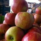 Μήλα Μαρτσούκος